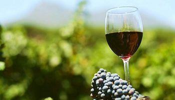 Se celebra el Día Nacional del Vino Argentino