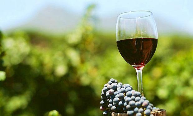La ley N° 26.870 declaró el 24 de noviembre como el día nacional del Vino.
