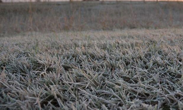 Aire polar: se esperan nevadas en importantes puntos del país