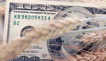 El aporte del campo superó los US$ 17 mil millones en lo que va del año