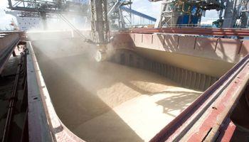 La liquidación de divisas del agro bajó un 9,6% en lo que va del año