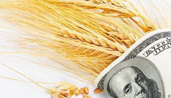 El campo aporta la mitad de las divisas que ingresan al país