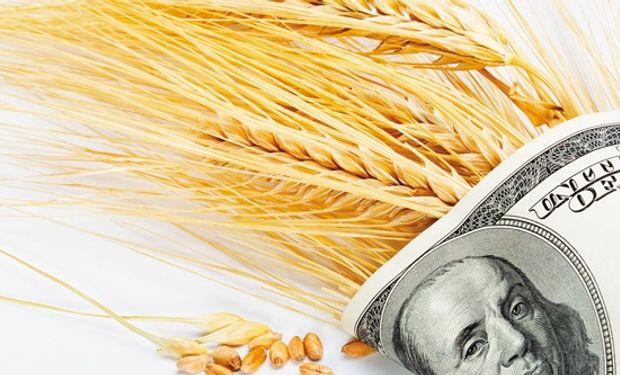 El agro aporta 50% de las divisas comerciales.