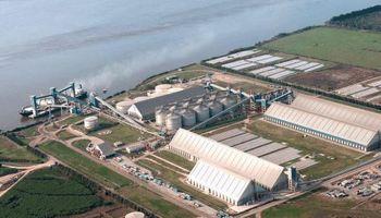Ingresaron US$ 4.189 millones por la exportación de granos y subproductos en 2019