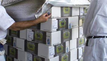 Carne bovina: principal fuente generadora de divisas en Uruguay