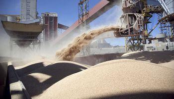Empresas agroexportadoras liquidaron durante agosto US$ 1.743 millones, un 30 % menos que en 2020