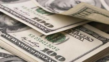 Blanqueo: ingresaron u$s7.150 M y ya se declararon u$s21.863 M