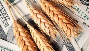 Dólar en Estados Unidos le dio una mano a los granos en Chicago