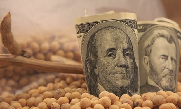 Respuesta al Gobierno: distribuidores de insumos desmienten que la venta tome el dólar paralelo