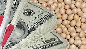 Tras inyección de dólares de la soja, el blue retrocede a $ 12,54