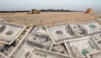 1000 millones de dólares están cautivos en el campo