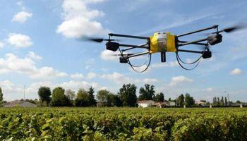 Grupo de productores agropecuarios busca startups que brinden soluciones innovadoras