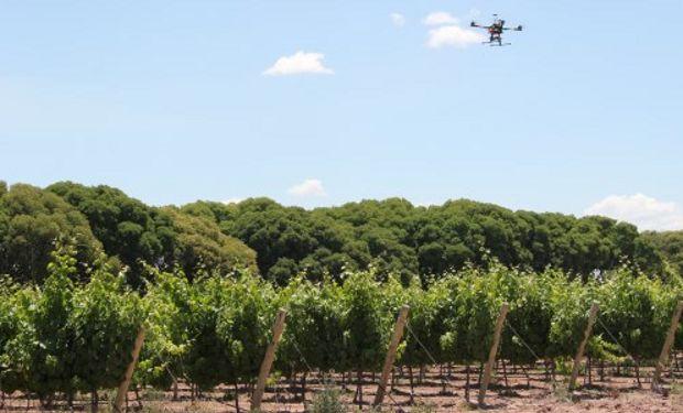 """""""Al volar a baja altura, el dron permite tomar imágenes de muy alta resolución y en tiempo real""""."""