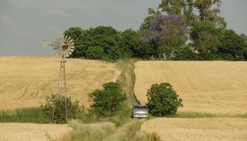 """El mercado inmobiliario rural sigue por debajo de """"niveles aceptables"""""""