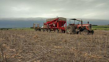 Registro único de Producciones Primarias en Santa Fe: se abre el plazo para la carga