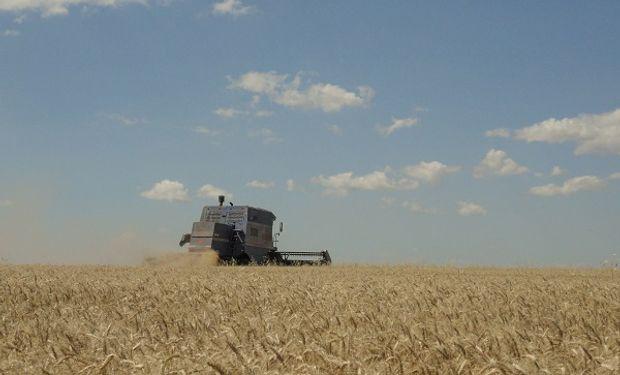 La provincia de Santa Fe convoca a actualizar datos del Registro Único de Producciones Primarias.