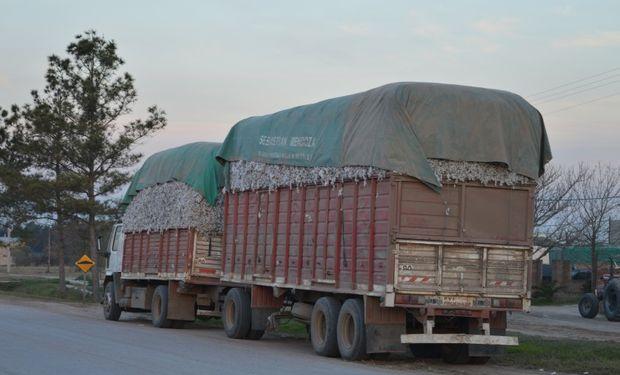Para realizar el encarpado se prohíbe la utilización de coberturas de polipropileno o yute y/o cualquier otro material contaminante susceptible de alterar la calidad del algodón y/o subproductos transportados.