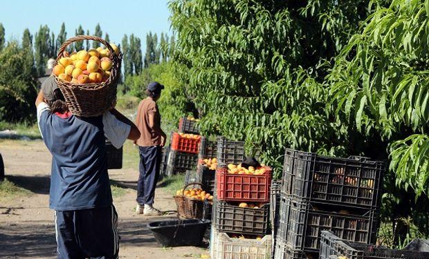 Buenos Aires busca abrir nuevos mercados frutihortícolas en Brasil