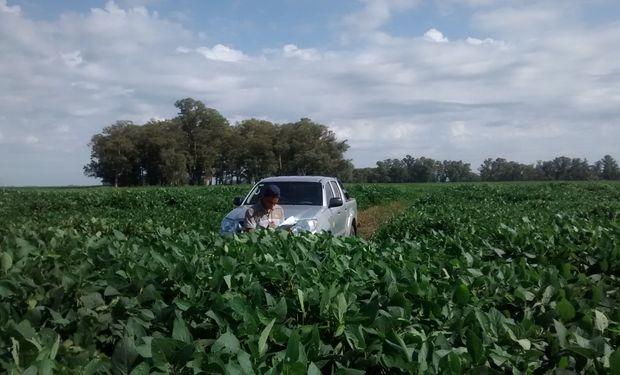 D&P Agro ofrecer soluciones agronómicas para el productor y para empresas que proveen insumos.