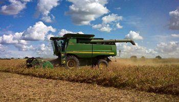 El Estado se queda con $65 de cada $100 que genera una hectárea de soja
