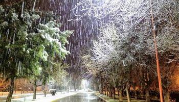 Cayó nieve en Buenos Aires y dejó sorprendentes postales