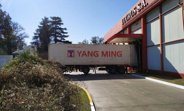 Destacan la primera exportación de carne con hueso a China.
