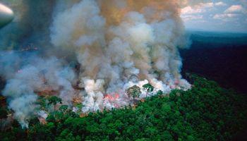 Por los incendios en la Amazonia, se pone en duda el acuerdo UE y Mercosur
