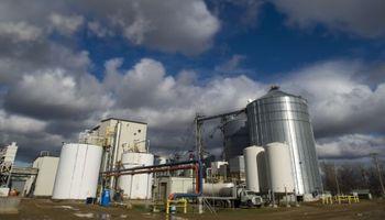 Industria de biodiésel paralizada y en crisis