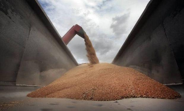 """""""La caída en la demanda de cultivos para biocombustibles, especialmente etanol de maíz, si impactará a la baja en los mercados de commodities agrícolas""""."""