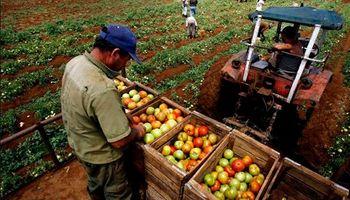 El negocio agrario no funciona