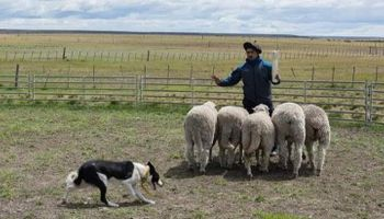 Trabajadores rurales reclaman un bono de fin de año de $15.000