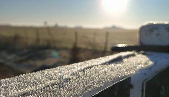Intensas heladas en la región pampeana, con promedios de 5 °C bajo cero