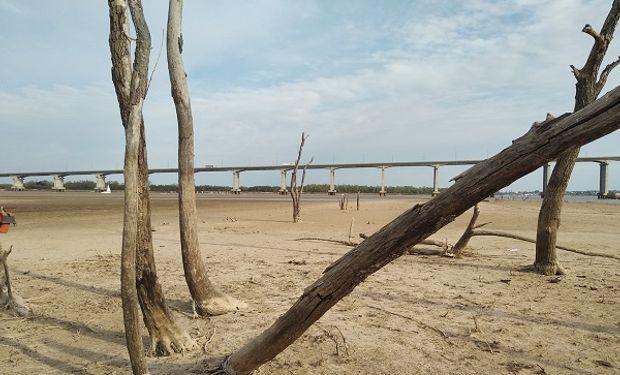 La programación de embarques estará sujeta a la altura del río, que en Rosario mide 80 cm menos de la media.