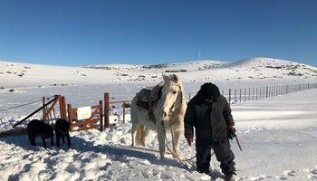 Reclaman más ayuda del Estado a productores patagónicos que atraviesan intensas nevadas