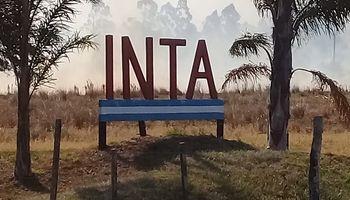 Un incendio en Corrientes destruyó 20 años de investigación del INTA