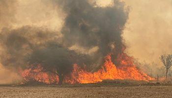 El incendio en Córdoba marcará un precedente: se quemaron más de 16.000 hectáreas en 5 días y buscan salvar animales