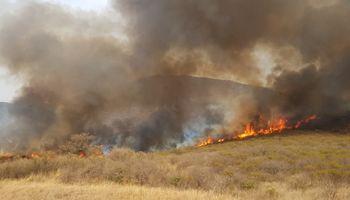 Por los incendios y la sequía, el Gobierno declaró la emergencia agropecuaria en Córdoba y Formosa