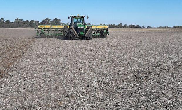 """La cosecha caería por segundo año y crece la recaudación fiscal: """"El sector comienza a mostrar signos de estancamiento"""""""