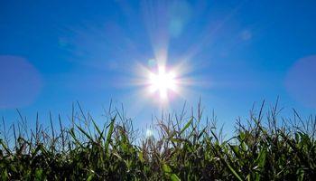 Clima: las temperaturas podrían superar valores normales del principio de verano