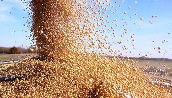 Buryaile confirmó la quita de retenciones a granos