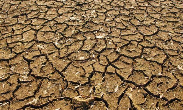 Sequía: se declaró la emergencia agropecuaria en diversos departamentos la provincia de Cordoba.