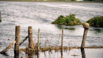 Santa Fe: productores no deberán renovar certificado de Emergencia Agropecuaria
