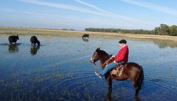 Se oficializó la emergencia agropecuaria para zonas inundadas de Córdoba y Chaco