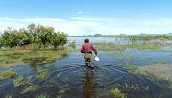 Los 3 mundos que plantea Agroindustria para un seguro multiriesgo