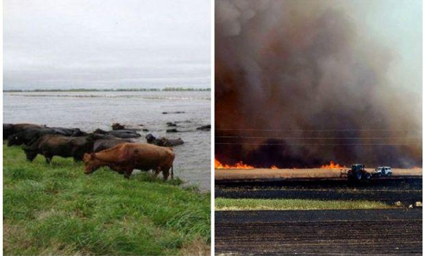 Agroindustria declaró la emergencia por diversos fenómenos.