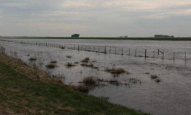 Declaran la emergencia agropecuaria en cinco provincias
