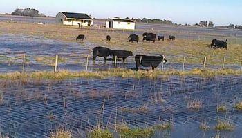 Firmaron la emergencia agropecuaria para departamentos de Santa Fe