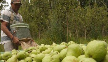 Legisladores patagónicos reclamaron una prórroga de la emergencia frutícola
