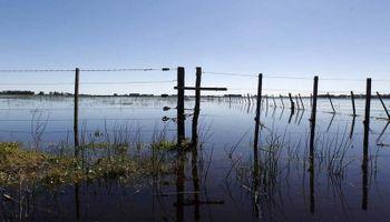 Evaluarán la situación en áreas productivas afectadas por la lluvia