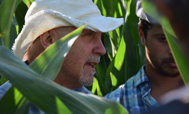 Cómo se construye el rinde del maíz: ocho variables y un modelo para apuntar al máximo posible